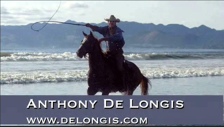 DeLongis.com.png