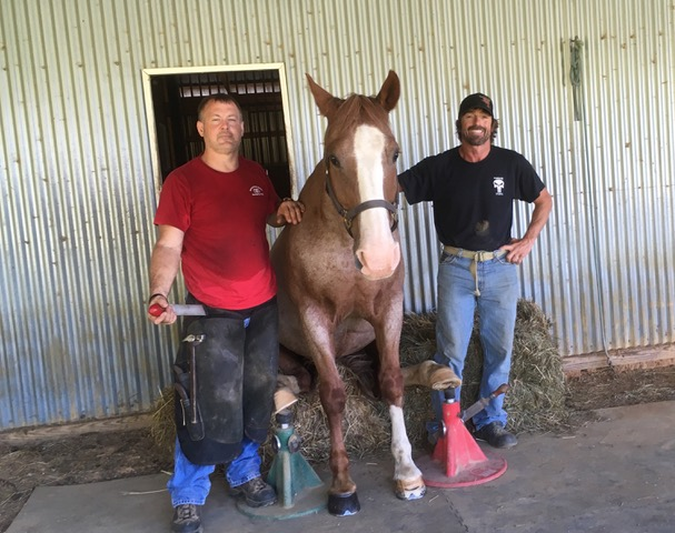 """Jody and Blade (the horse on the """"Walking Dead TV series) with his trainer/stuntman Tommy Turvey"""