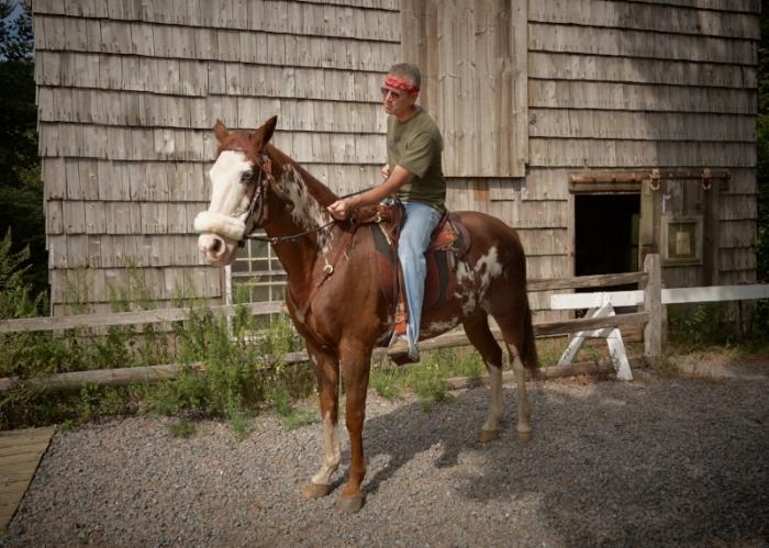 Ron Goodmark's horse Tucson likes his Southern Cross Poley Australian saddle