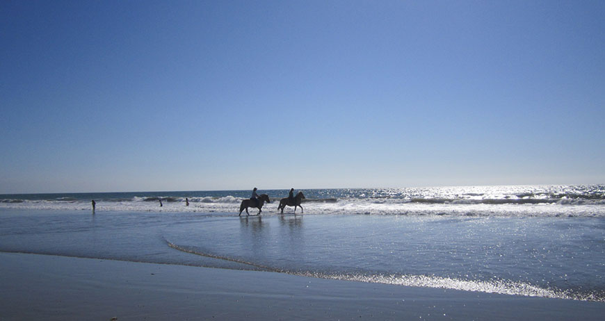 Riding confidently on the beach with the Fjord sisters, Martina and Juliana.  .