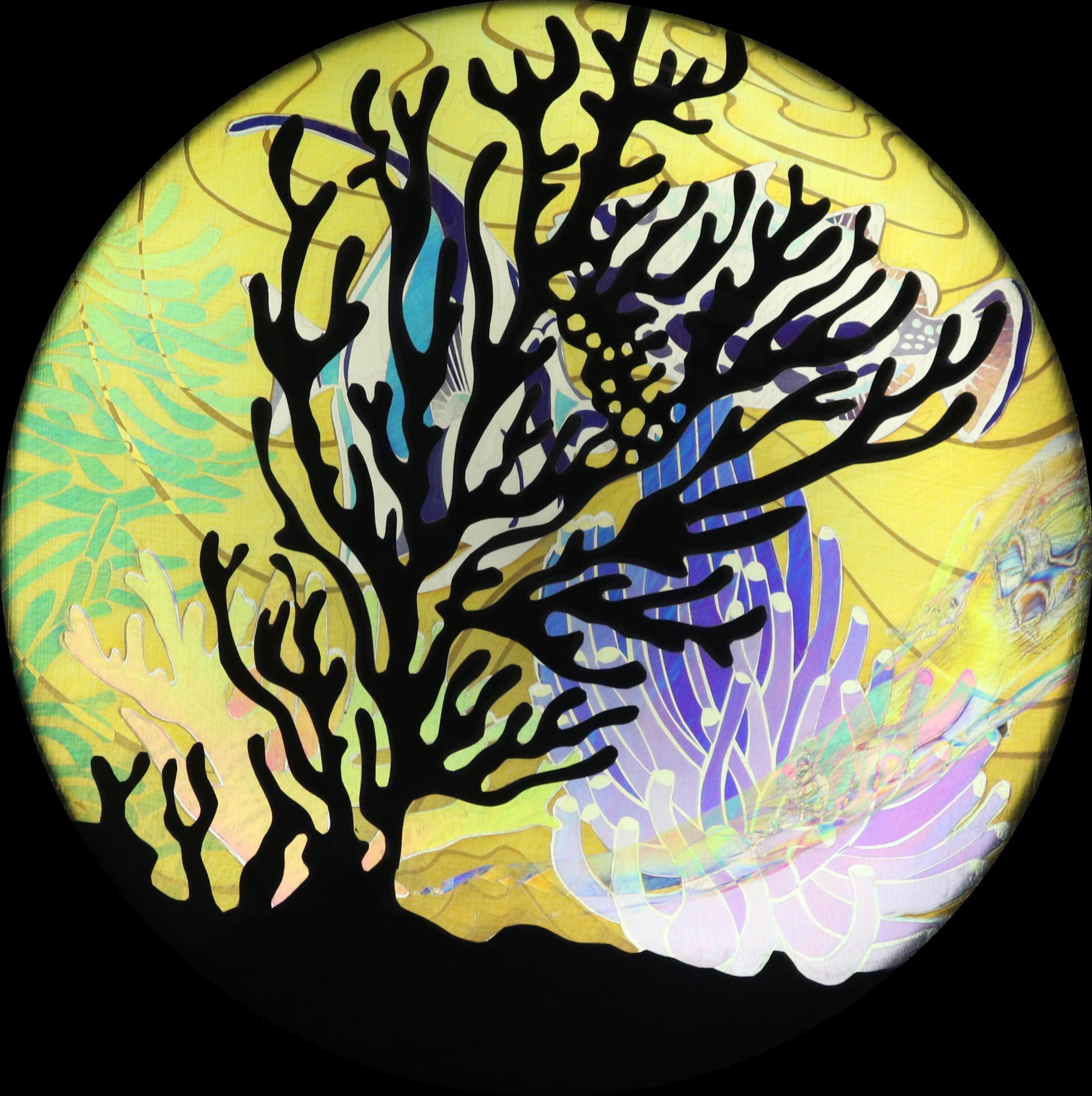 Coral Caper (1).png