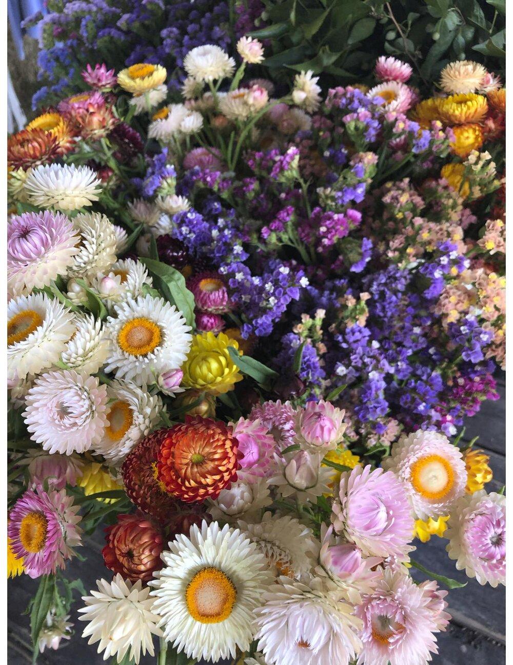 Dry-able flowers, JPEG.jpg