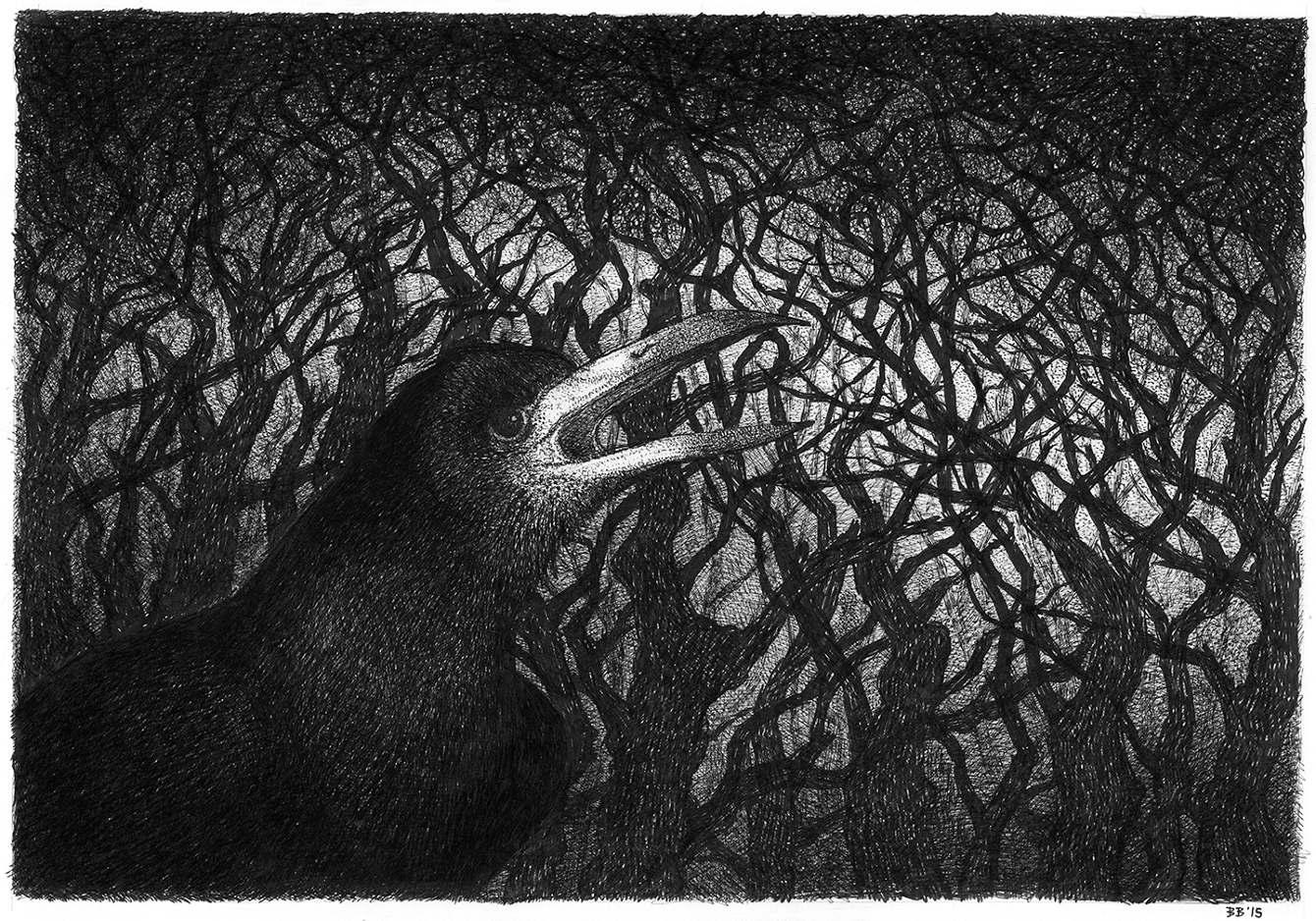 Artwork by  Barney Bodoano