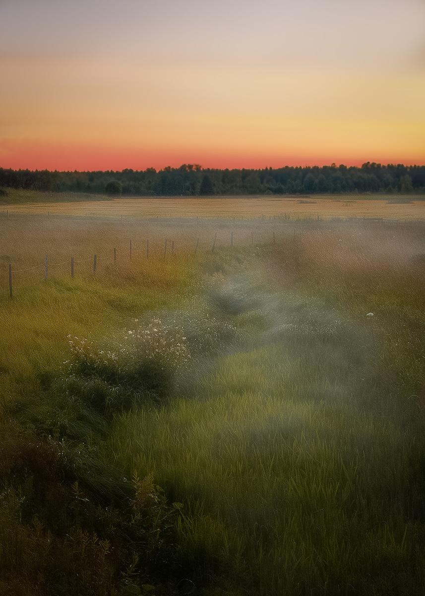 Mist by Monet