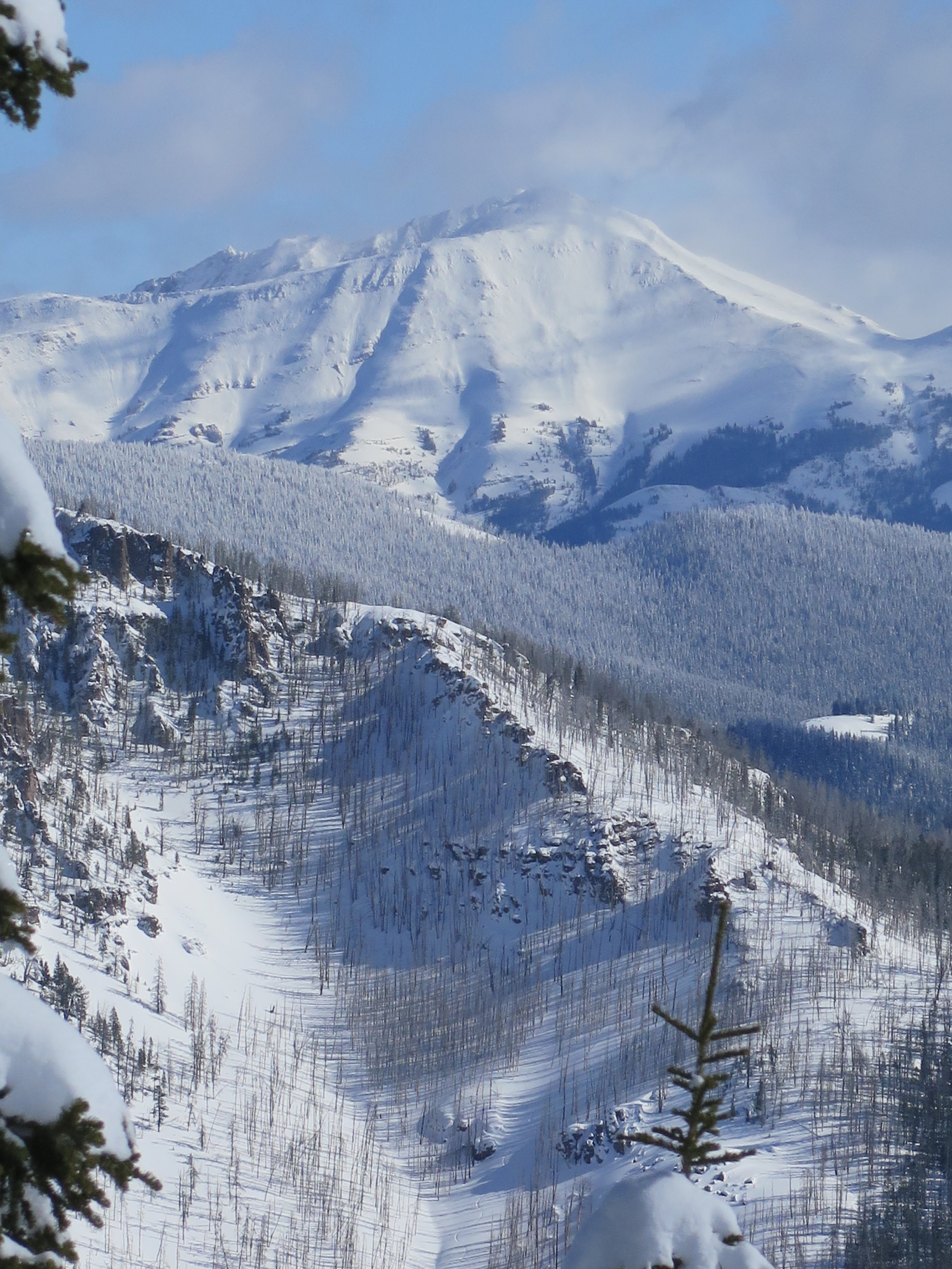 Montana Backcountry Skiing