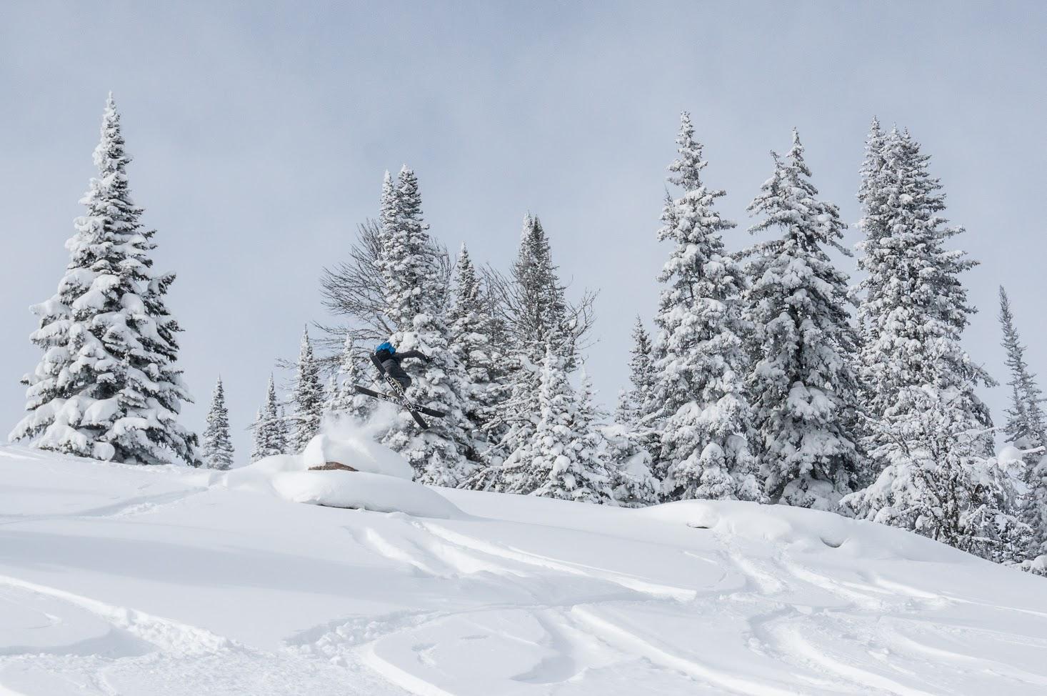 Bozeman Ski Guides