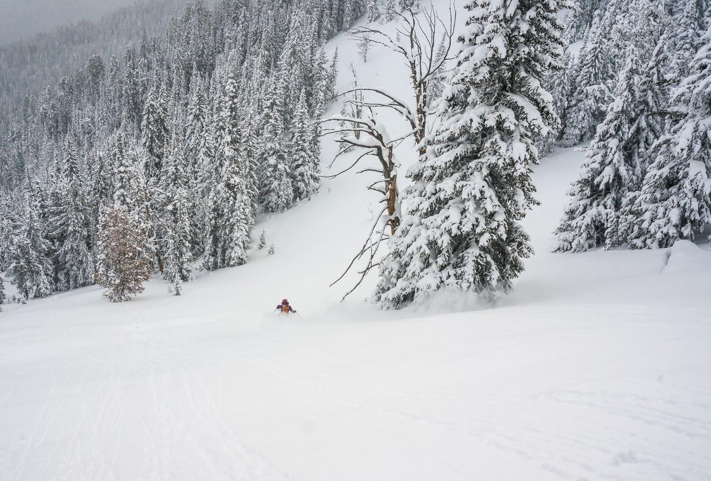 Yellowstone Backcountry Skiing