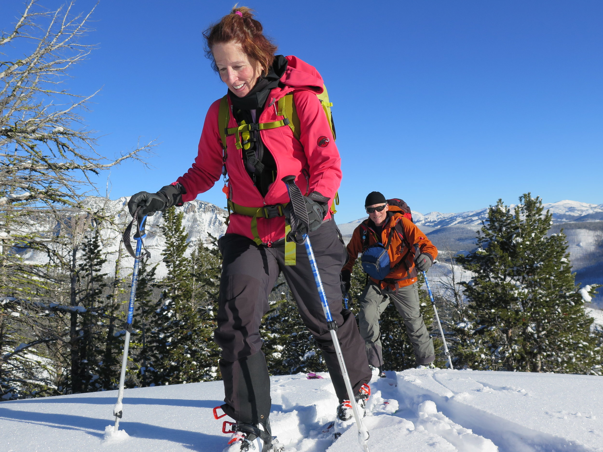 Bozeman Backcountry Skiing