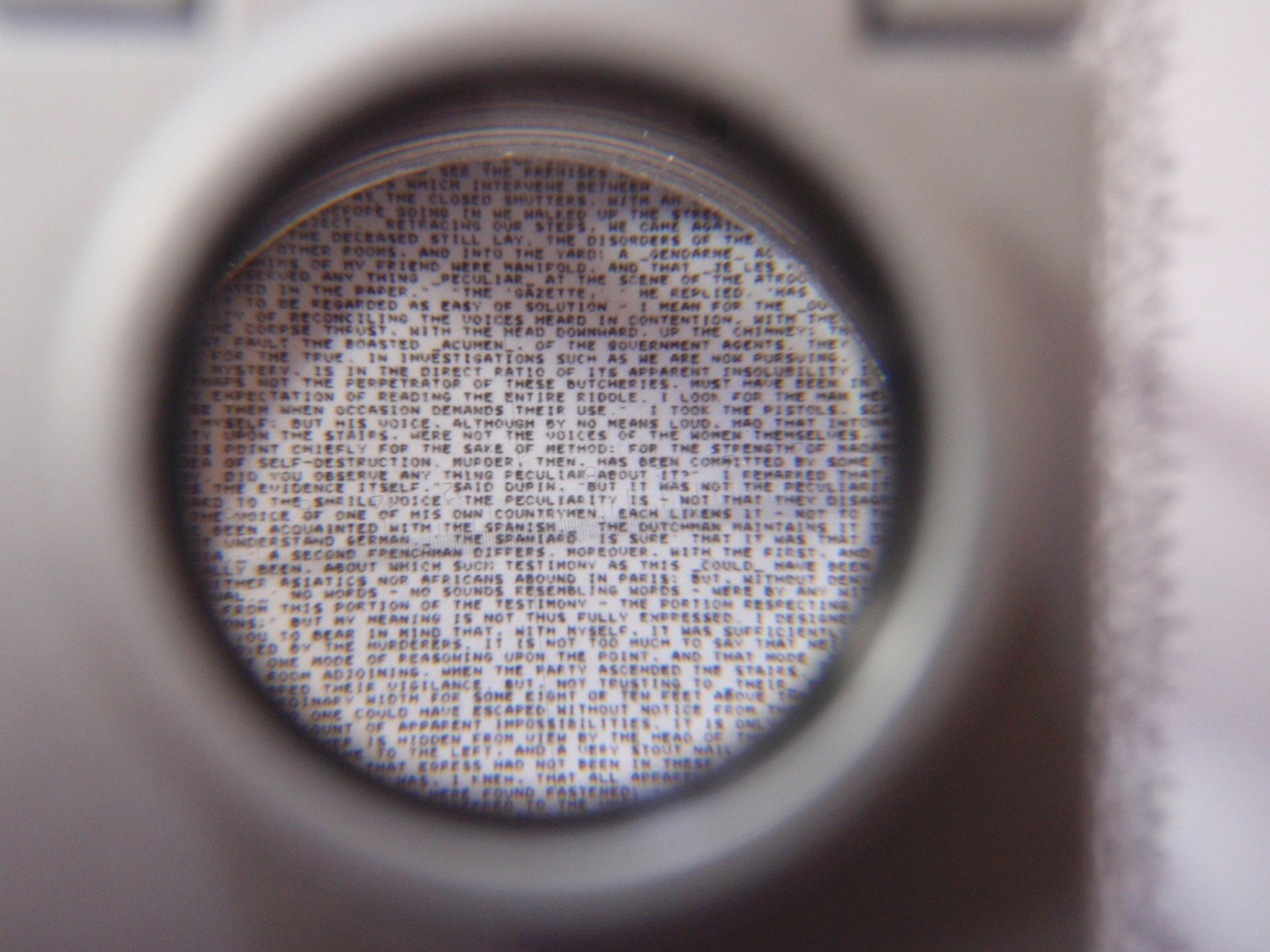 P9100620.JPG