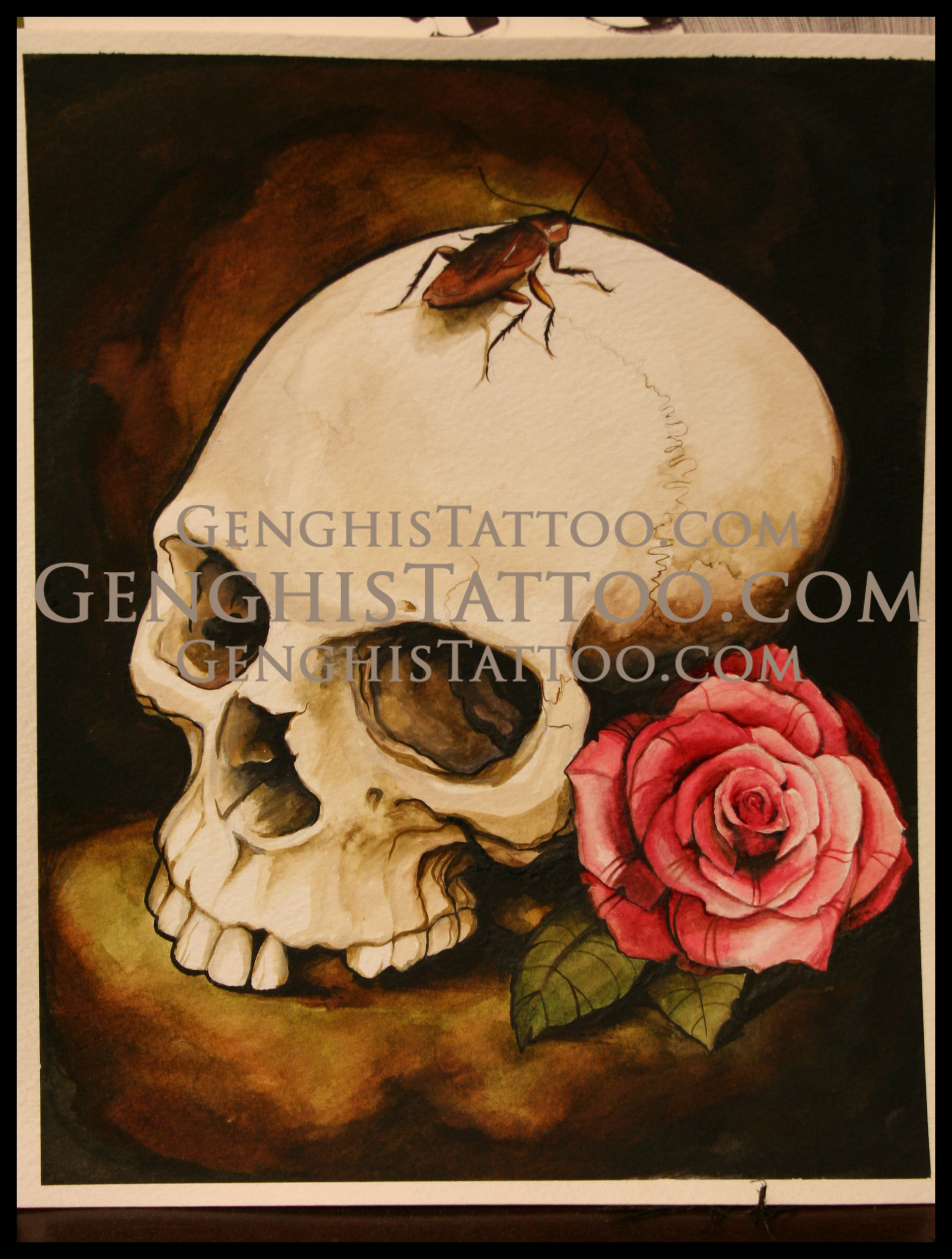 Skull with rose and cockroach. Original Artwork fine detailed.