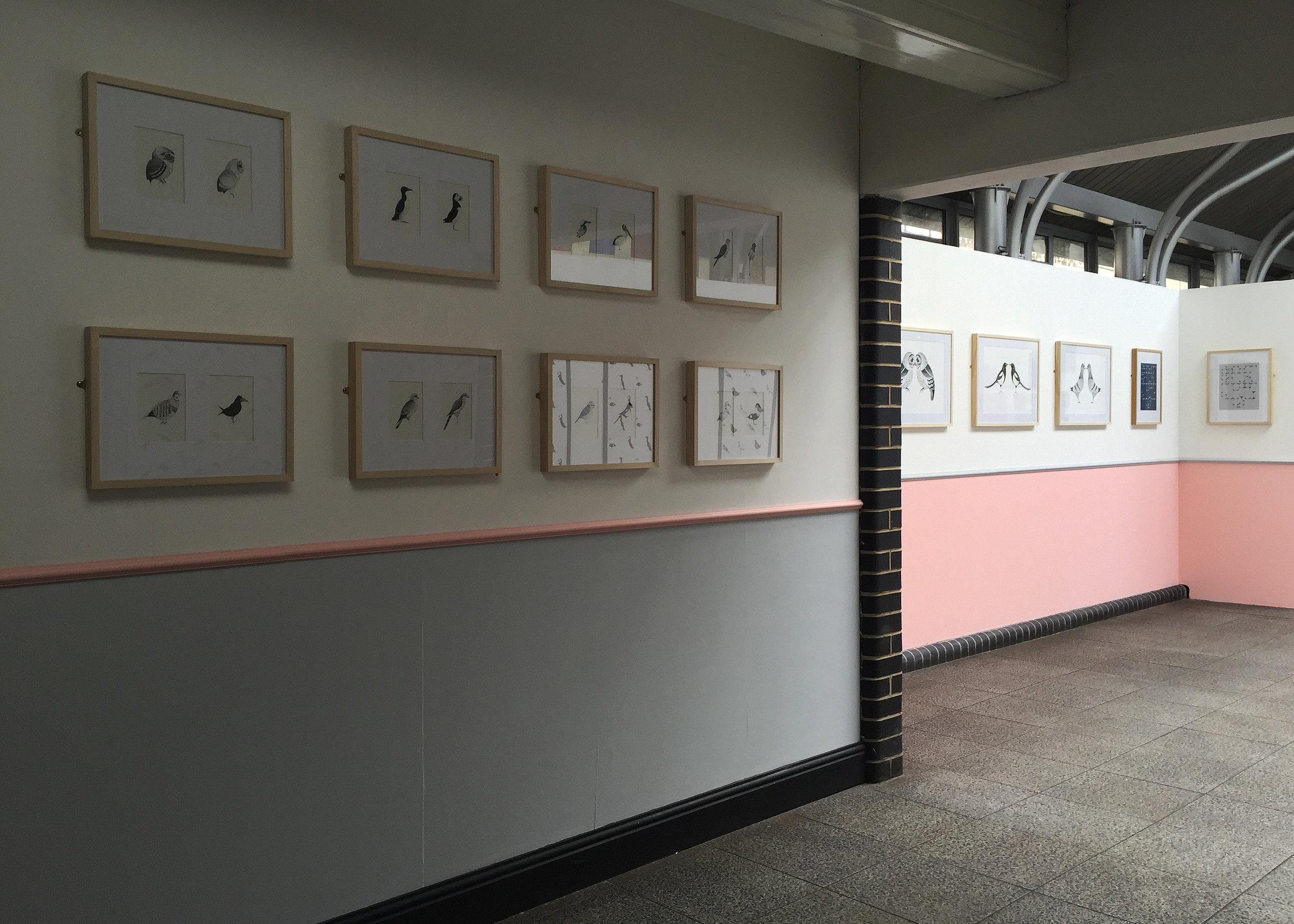 II . norwich arts centre . 03.17