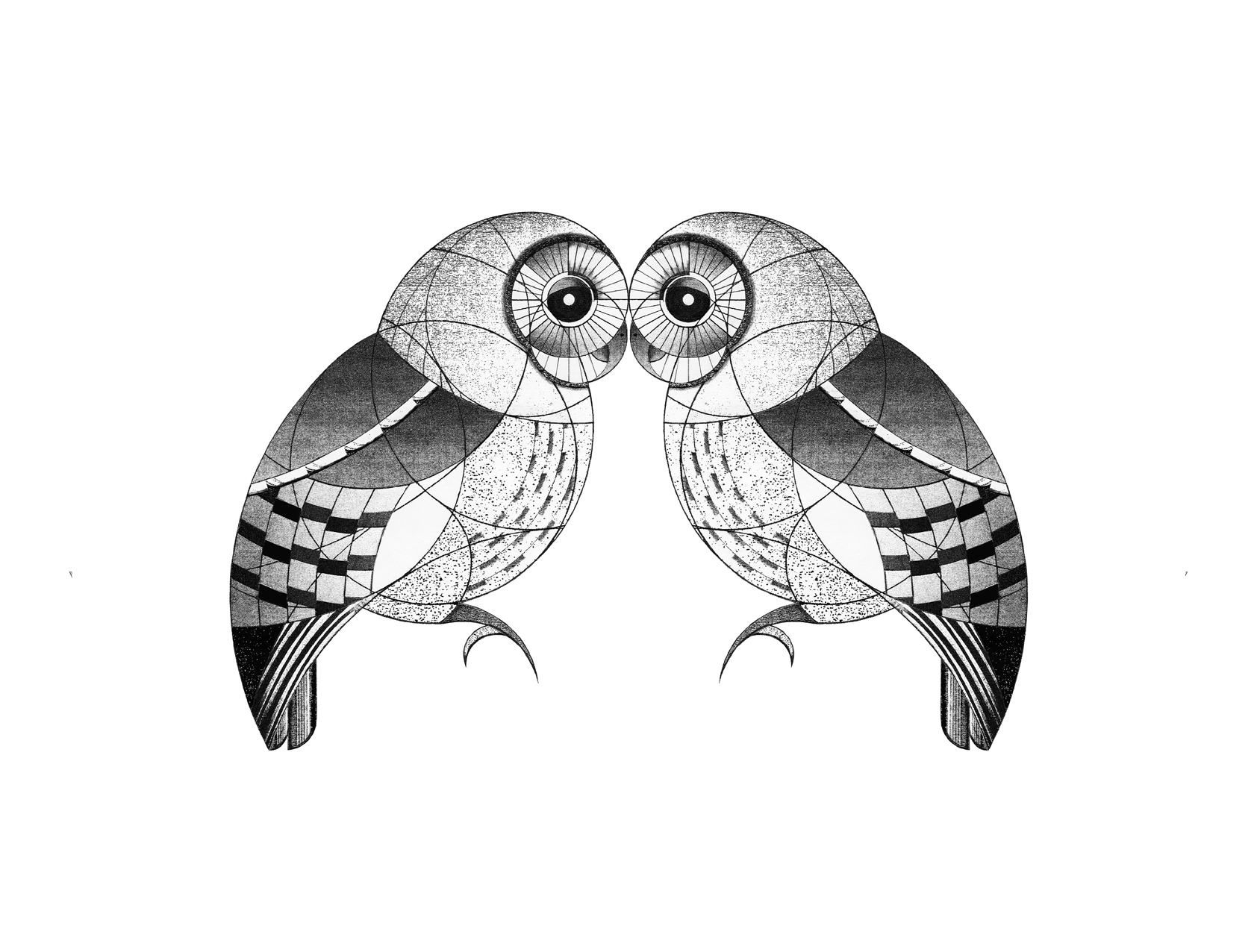 oa's owls