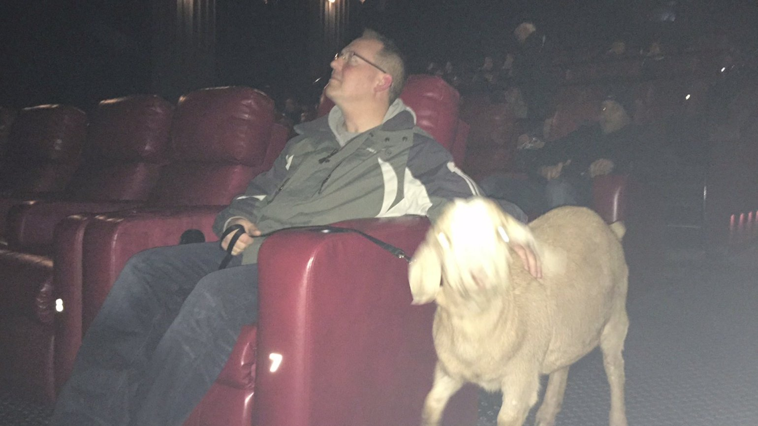 Brian and Duckie at the movies.