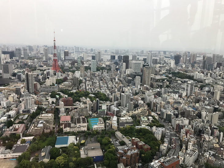 View from the top of Mori Tower in Roppongi Hills.You can see Tokyo Tower and the new Skytree Tower.