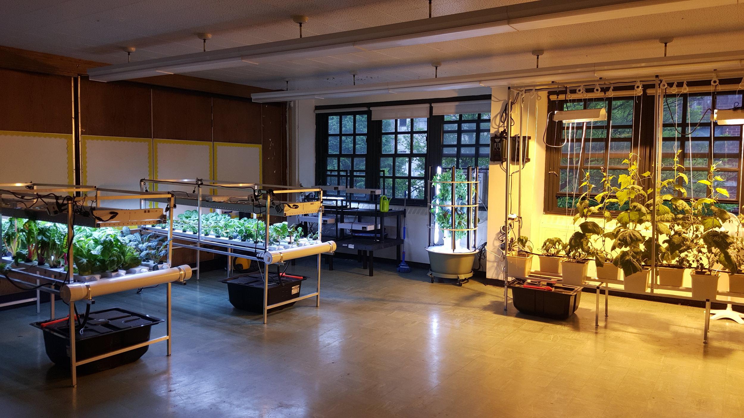 Full Lab @ STM 2.jpg