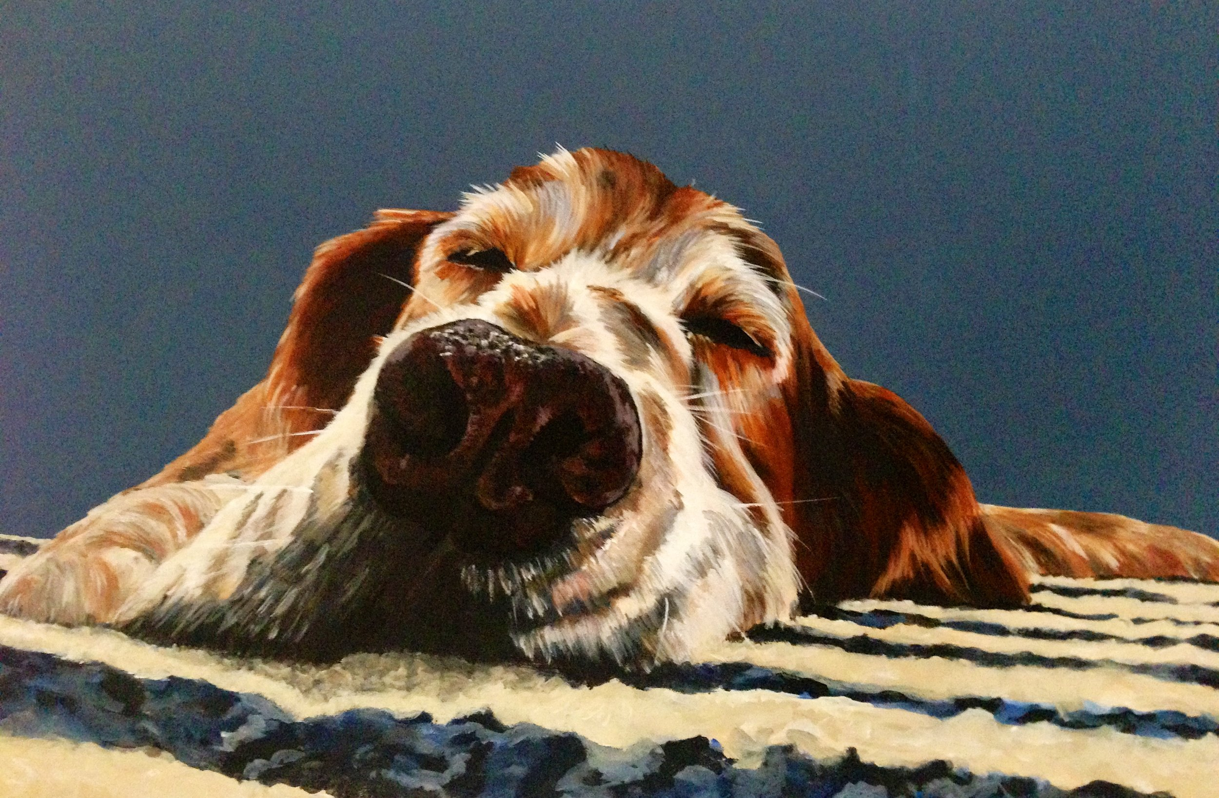 Dana - Acrylic on canvas - 18 x 36 - My old dog Dana. I did this painting for myself to remember her by.