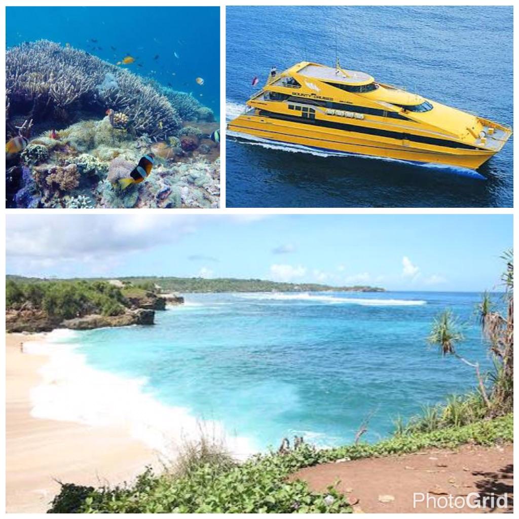 Where Is Bali Hai Island day-cruise to nusa lembongan — globe hopping with irma