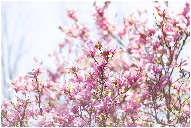 emily-belson-photography-spring-engagement-kim-ben-09.jpg