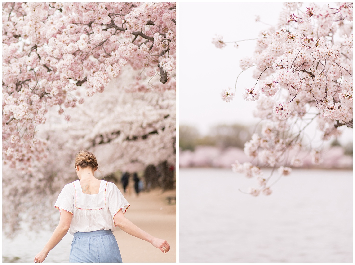 emily-belson-photography-cherry-blossom-dc-jessica-09.jpg