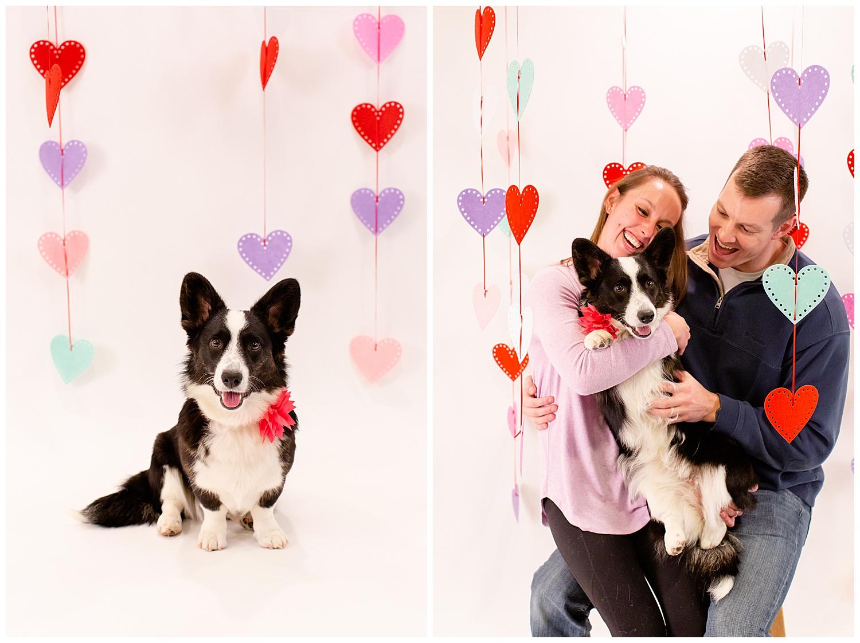emily-belson-photography-couple-dog-valentine-photoshoot-04.jpg