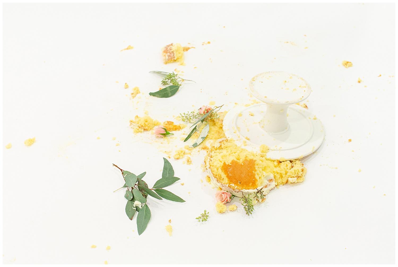 emily-belson-photography-washington-dc-baby-cake-smash-27.jpg