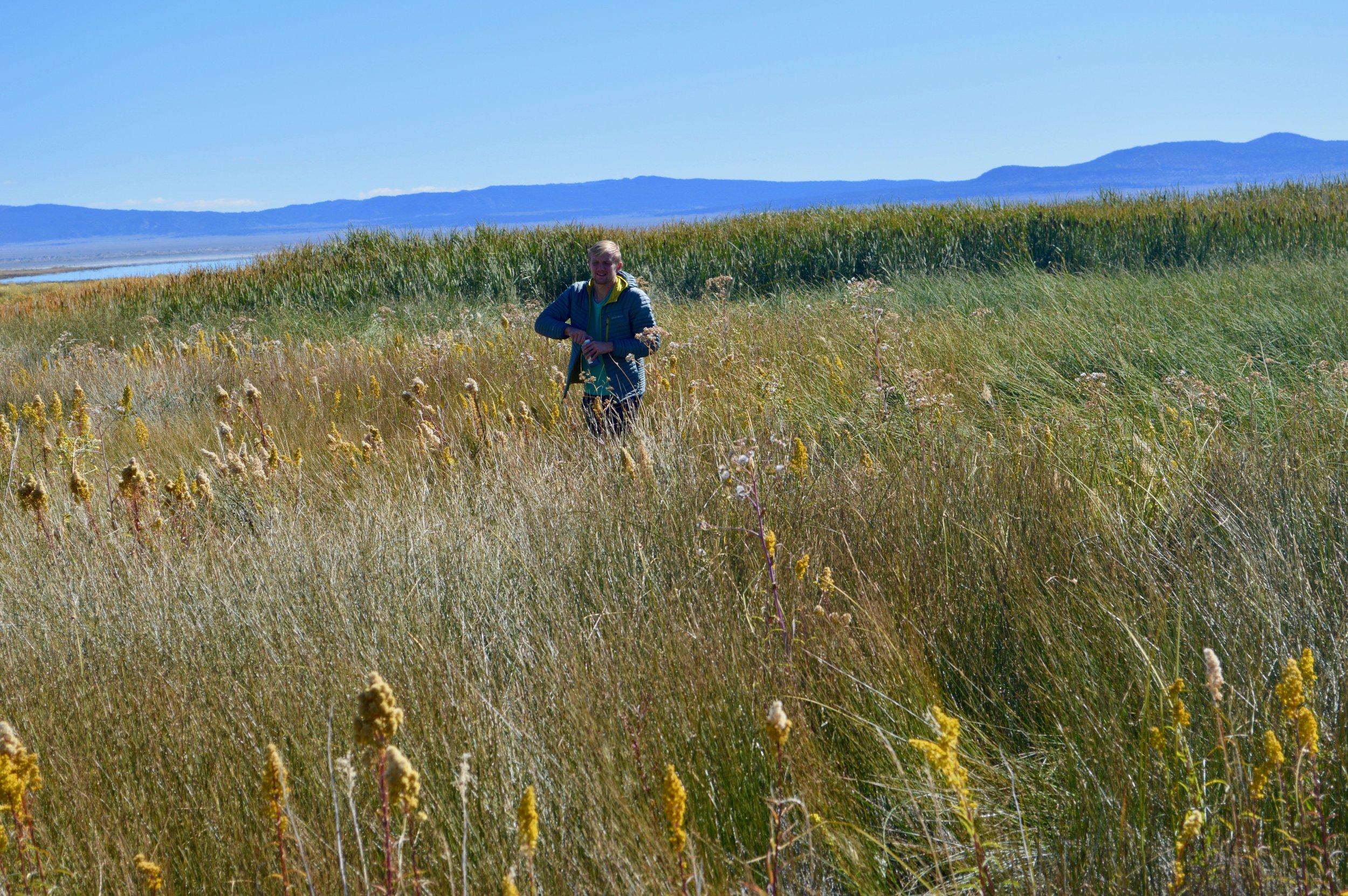 Noah Jemison (University of Illinois) hunting for springs on the north shore of Mono Lake