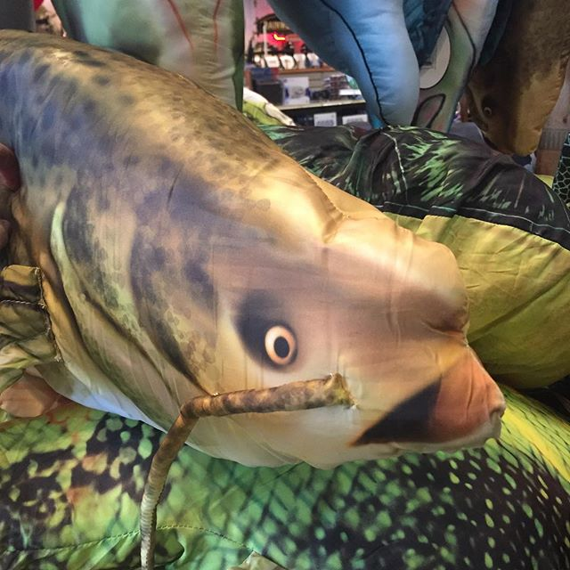 You know this is on our shopping list for our home this holiday! Taking live catfish from their homes is definitely not. #defundnoodling #paulryan #animalrights #stayoutofmyhole #bassproshop #cabelas #carhartt #nascar #santa
