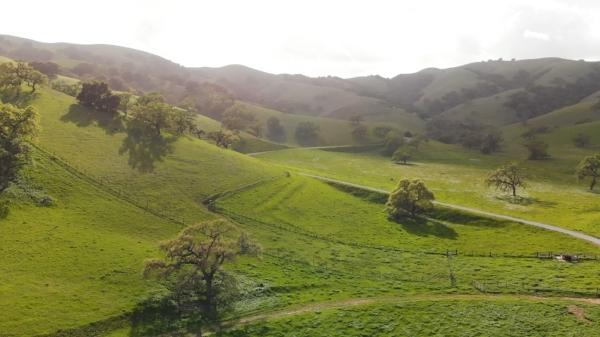 green-hills.jpg