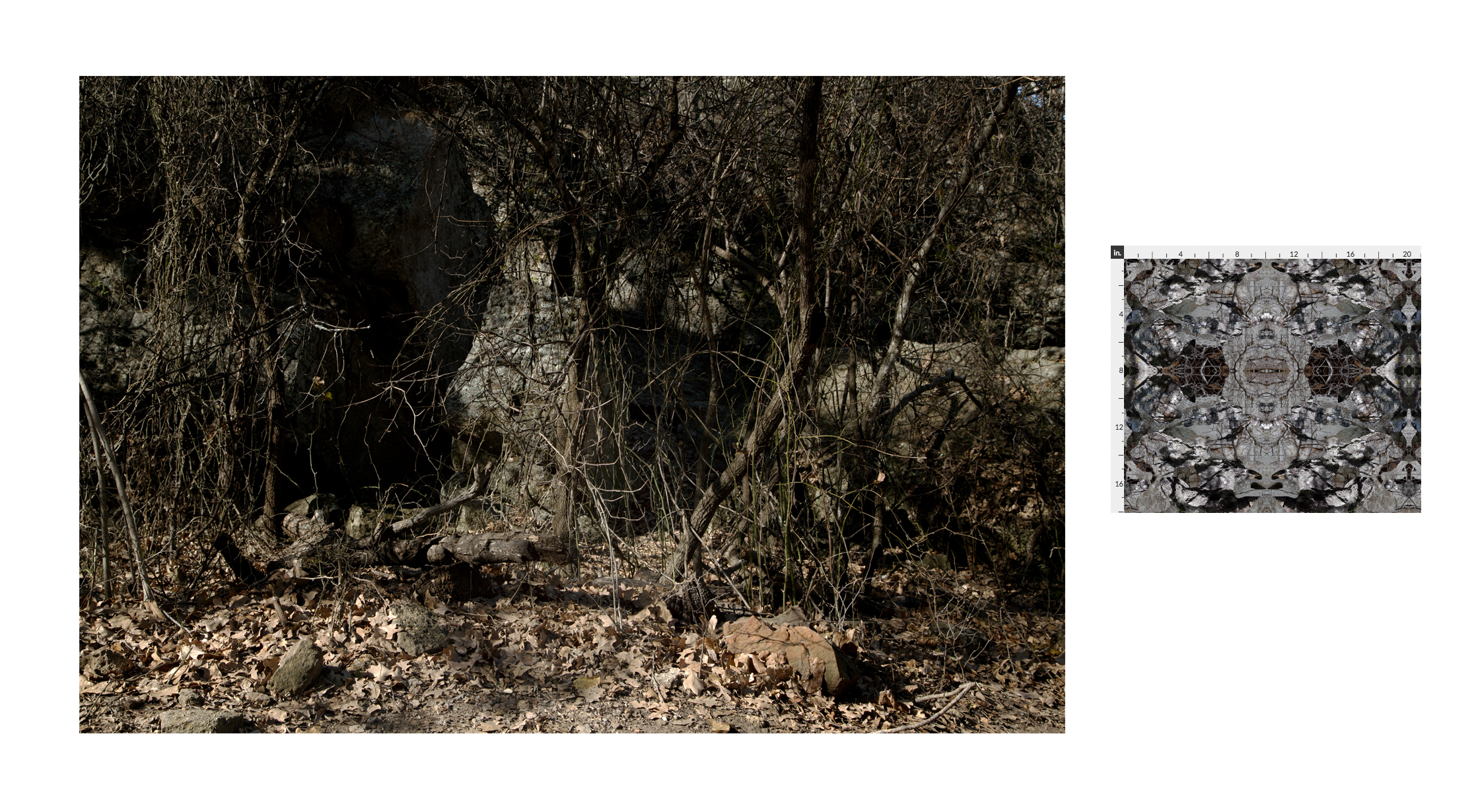 MINERAL WELLS PARK LANDSCAPE STUDY & TEXTILE DESIGN   2017  Left: Landscape study taken at Mineral Wells Park.  Right: Digital textile design for border-crosser invisibility suit prototype, based on collected textures at Mineral Wells Park.