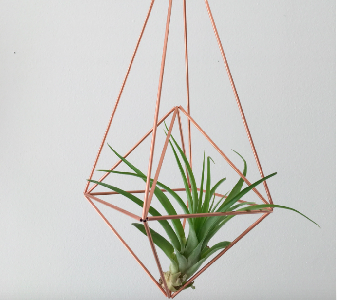 DESCRIPTION  Join us at Outside the Shape to make your very own Geo Airplant Holder. The proper name is a Himmeli, these beauties originated in Finland as Christmas decor, believed to bring prosperity for the up coming year. Originally made with Rye straw, this project will be metal and your choice of Copper or Brass (gold).  Workshop includes all necessary materials, an air plant, and sweet treats!  No crafting experience required. Grab a friend or two and get your Himmeli on.