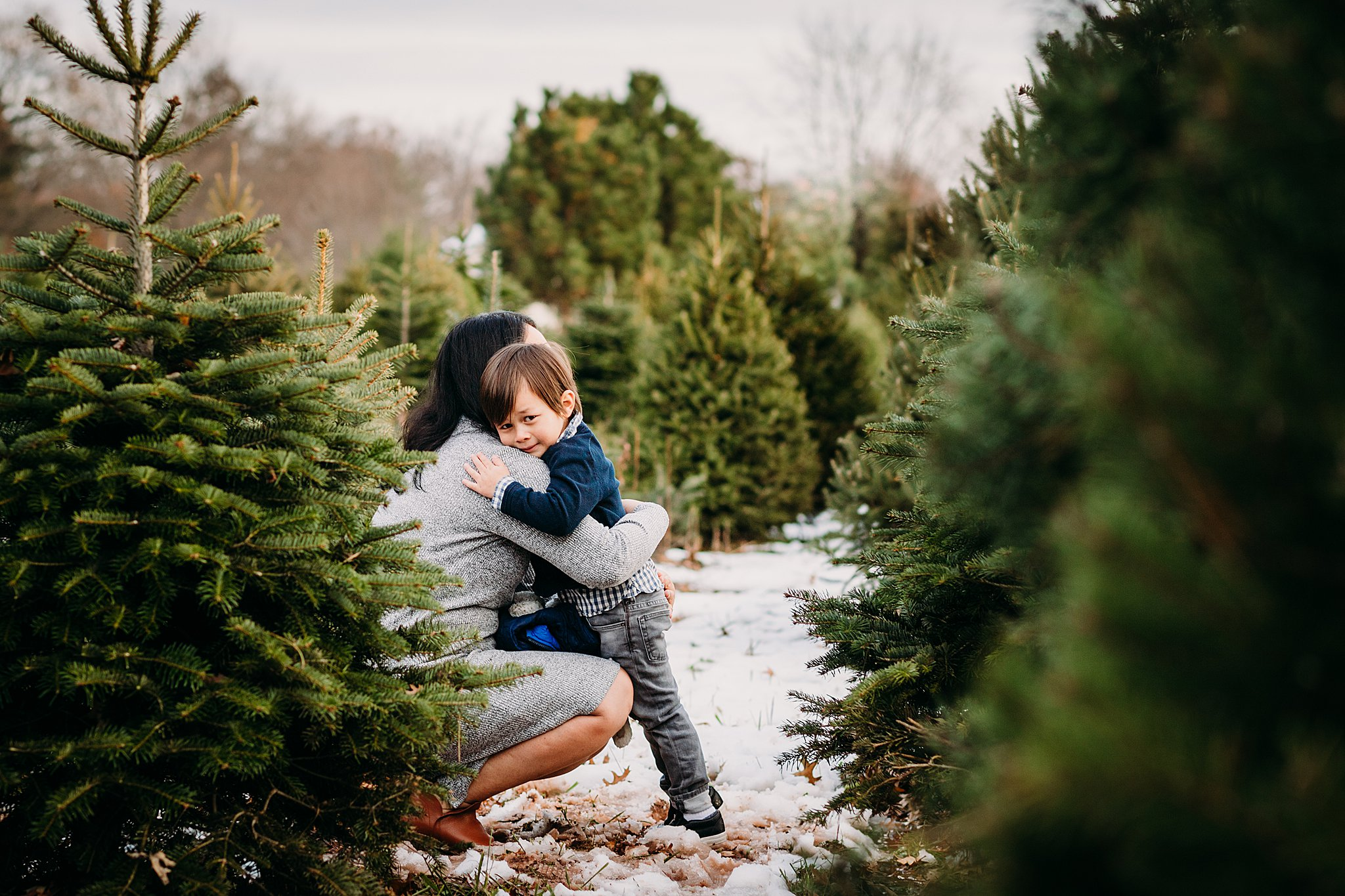 Christmas Tree Farm Photography near Philadelphia_ desiree hoelzle photography_0014.jpg