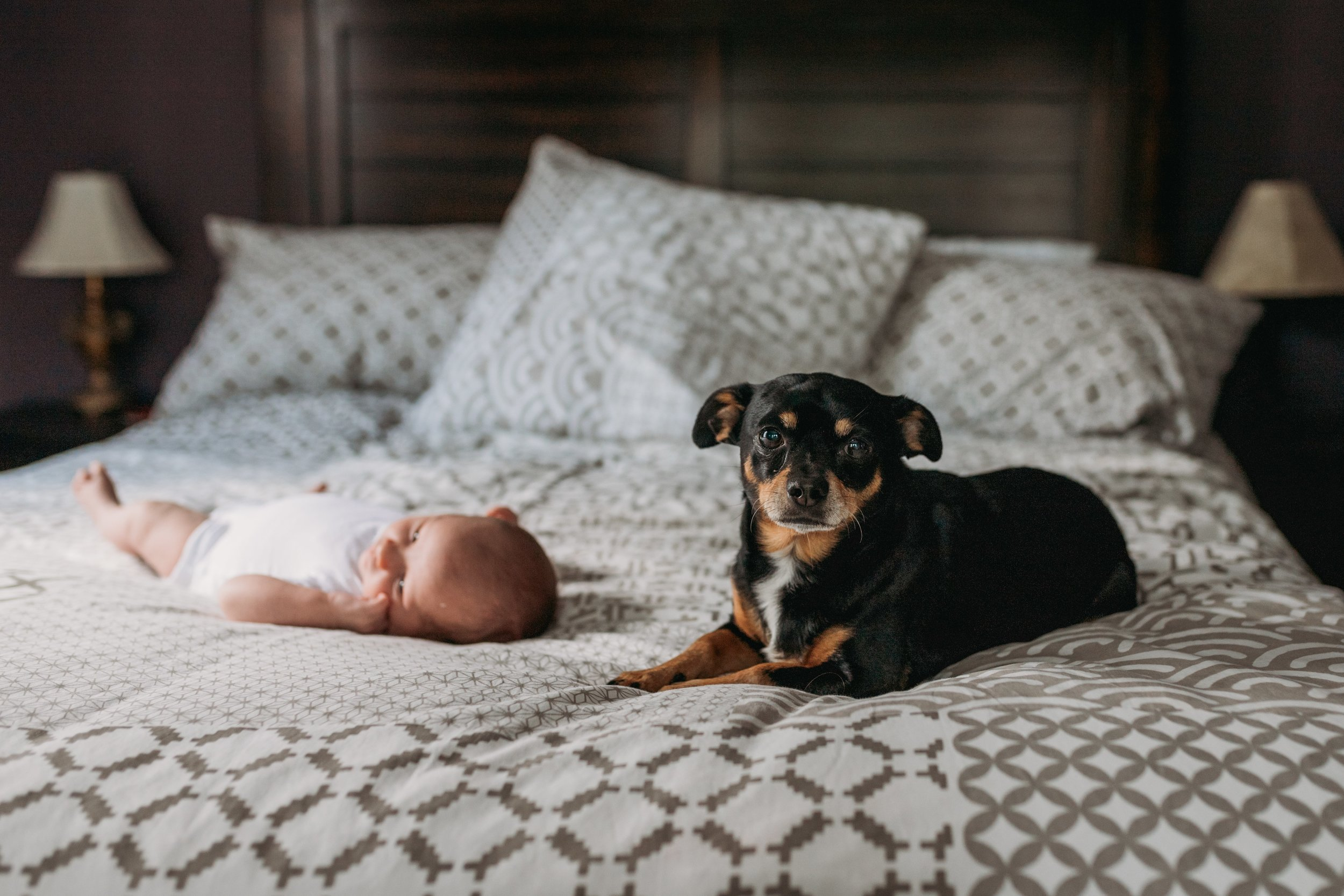 Delaware County Newborn Photographer