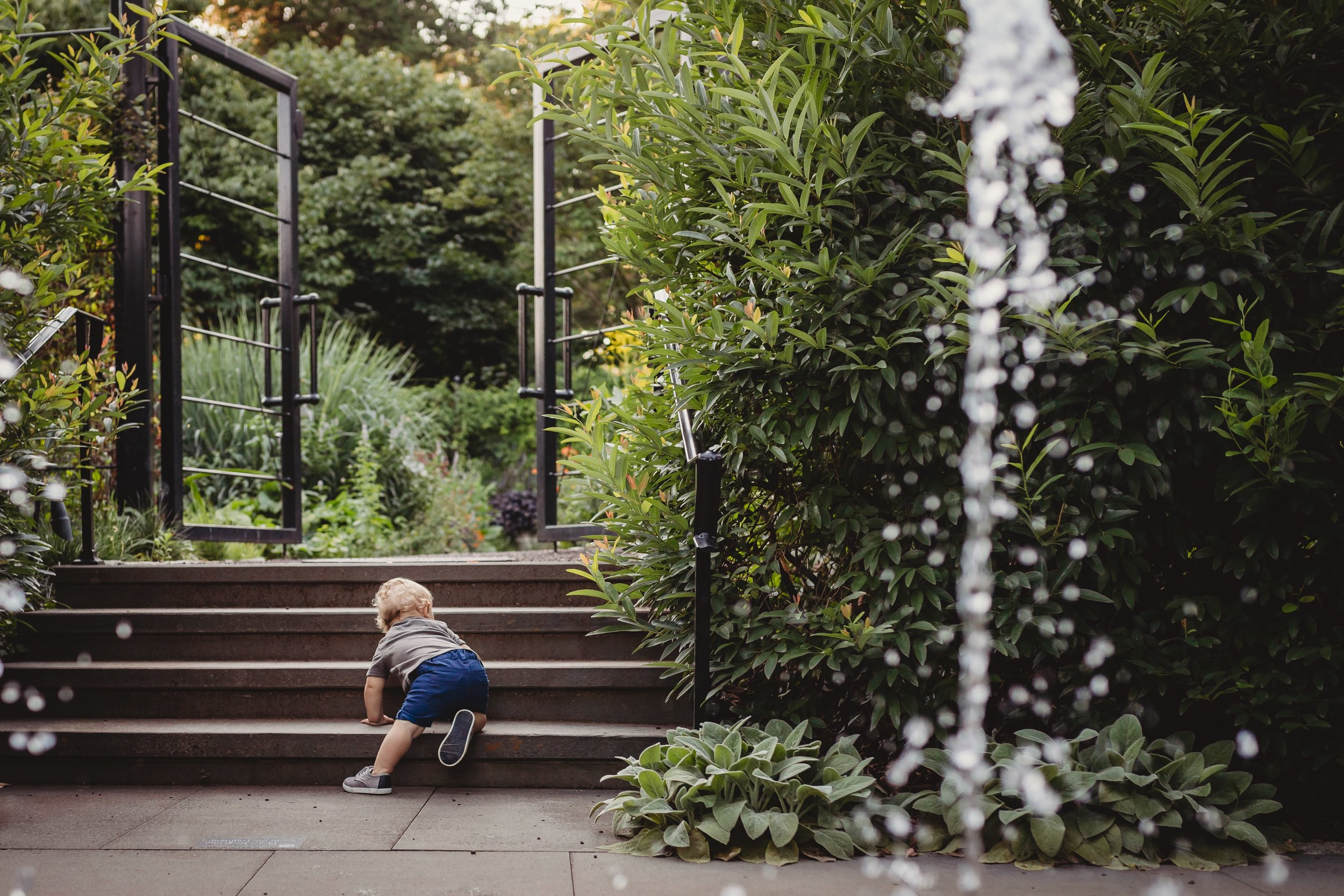 First Birthday Photo Session in Chestnut Hill with Desiree Hoelzle Photography