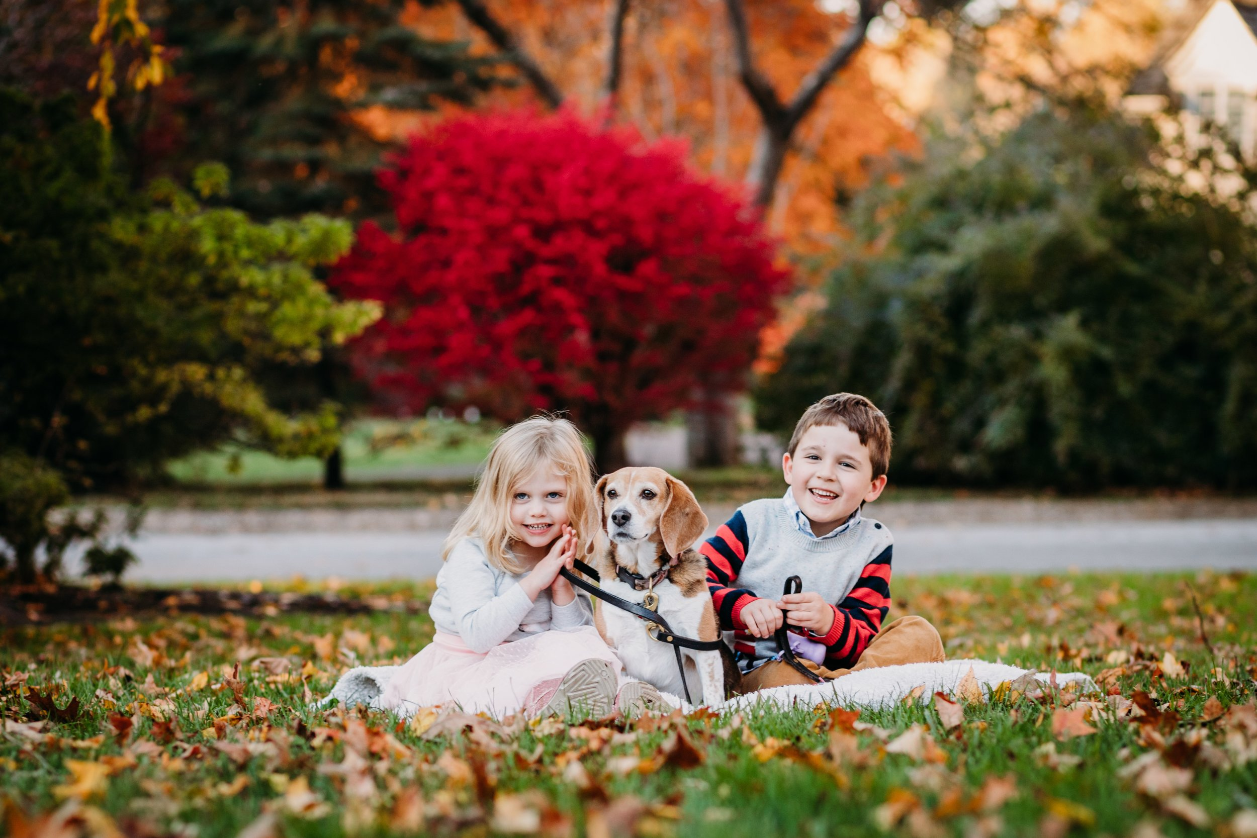 Bryn Mawr Family Photographer _ Desiree Hoelzle Photography