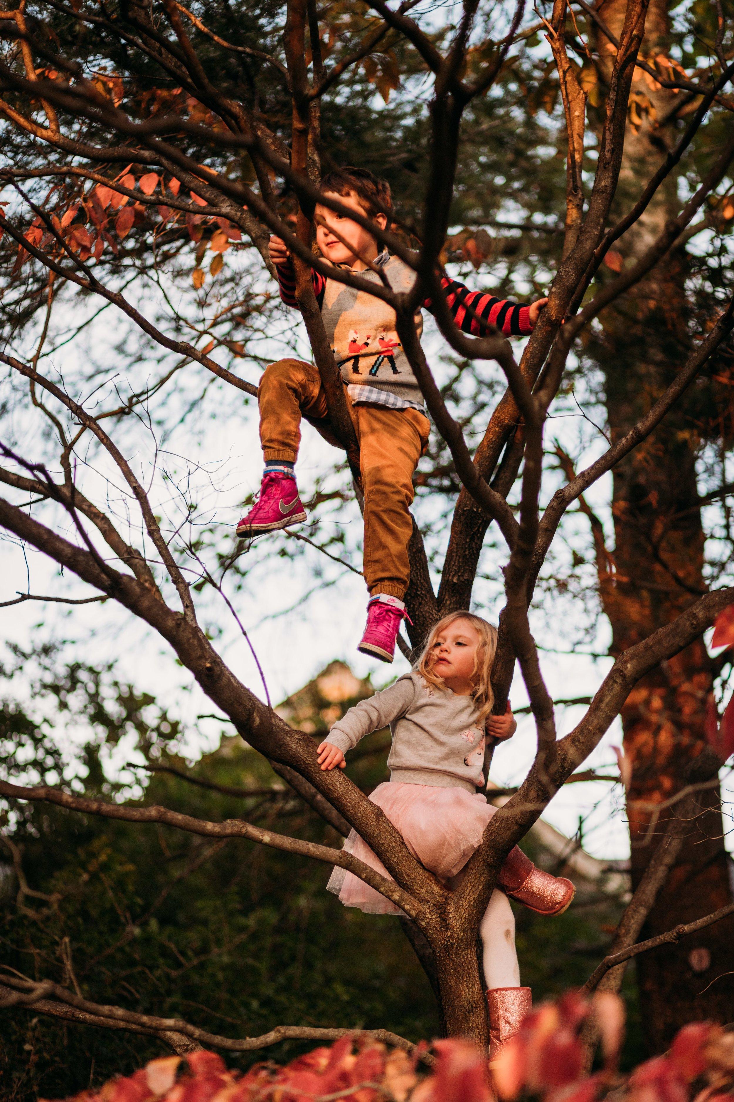 Montgomery County Family Photographer_ Desiree Hoelzle Photography