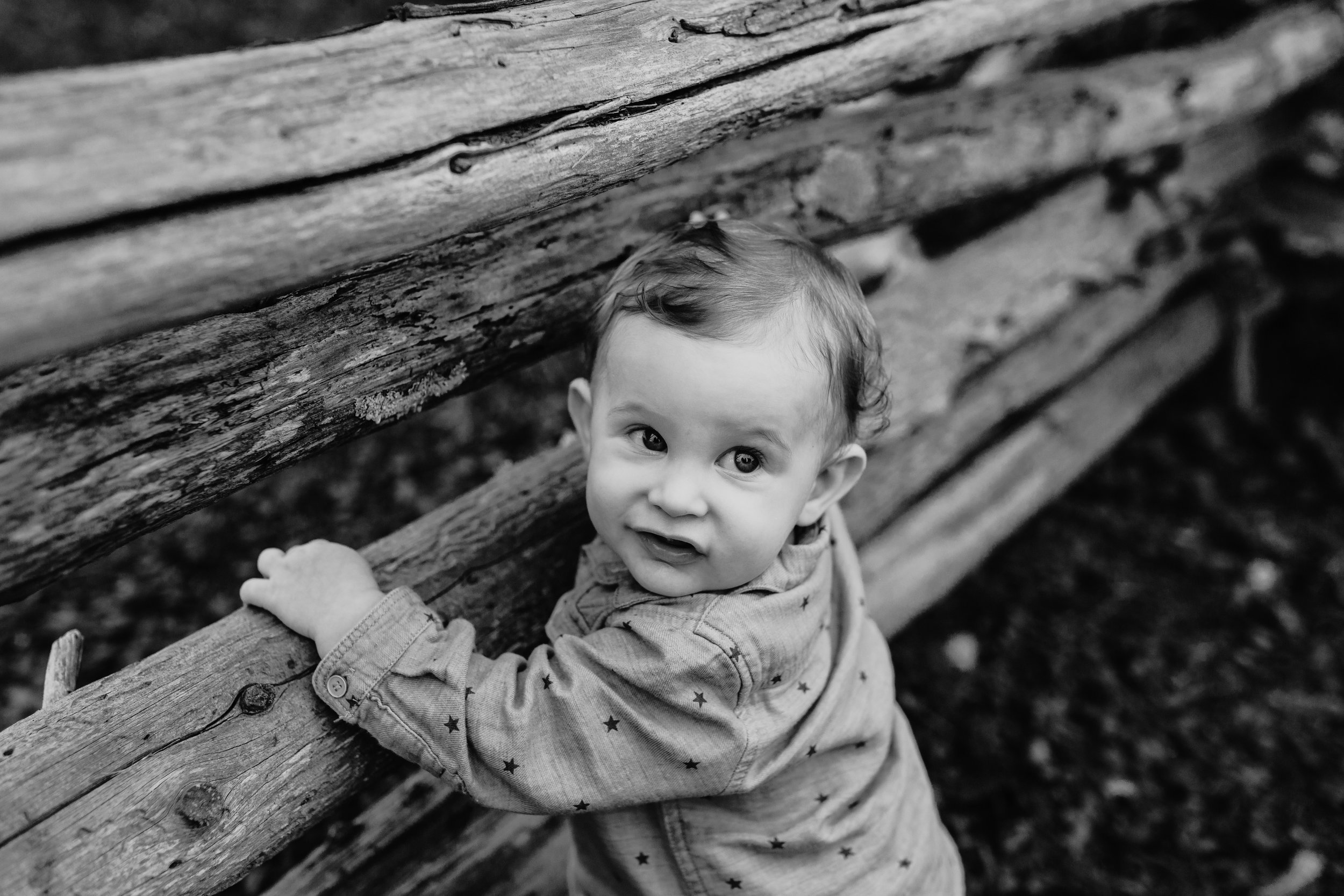 Jenkintown Family Photographer _ Desiree_Hoelzle_Photography_0096.jpg