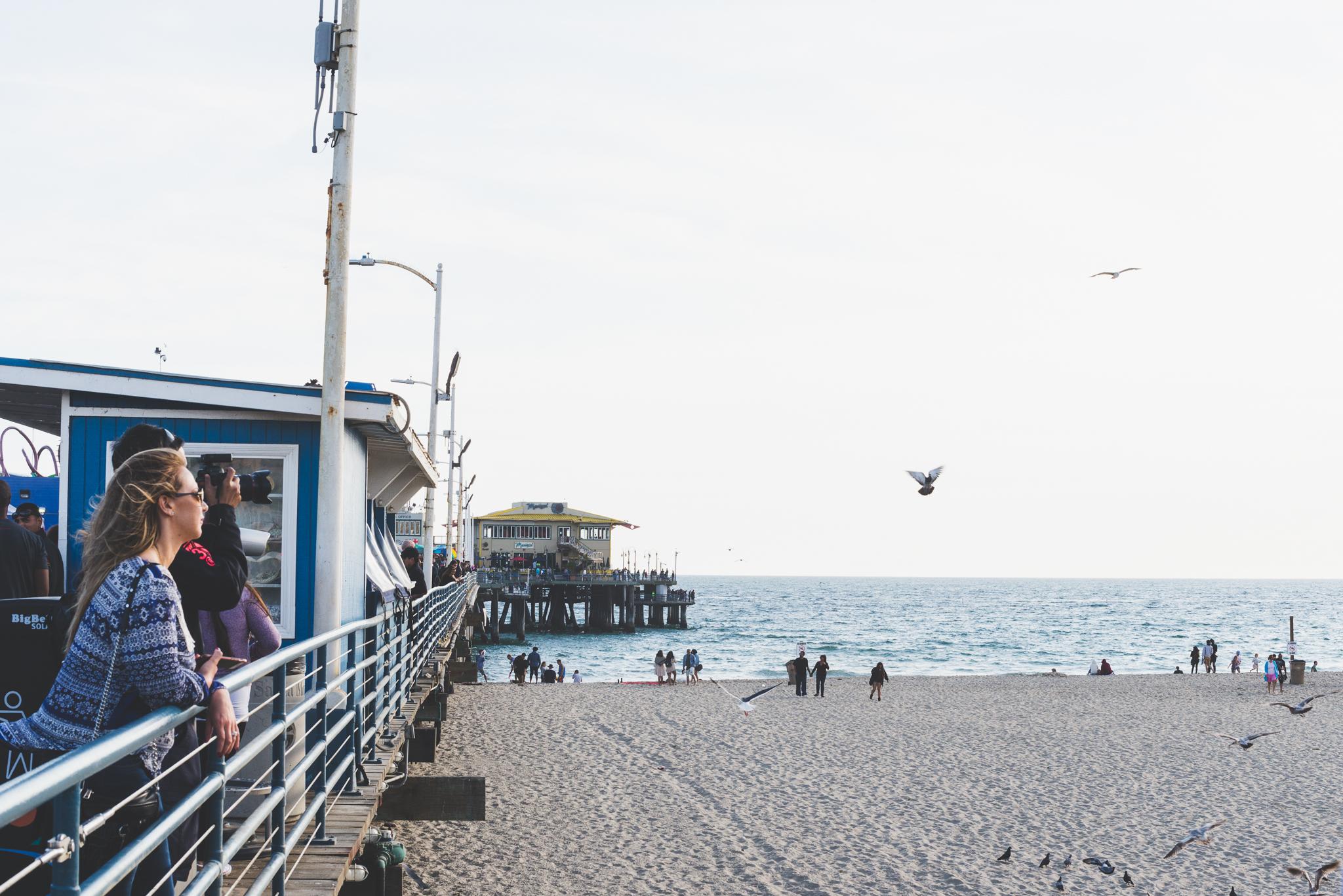 The Santa Monica Pier. / 5/7/16 / Santa Monica, CA