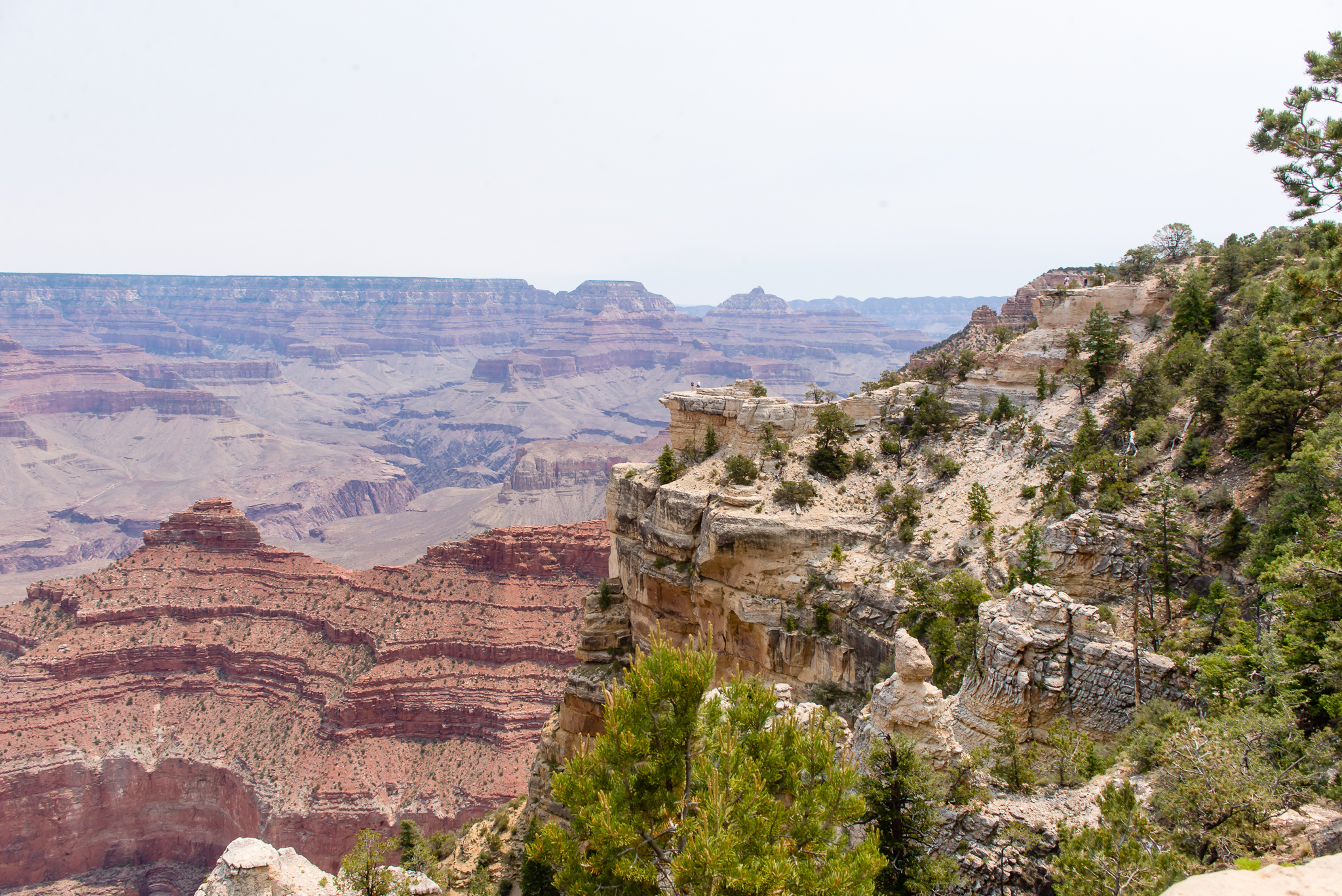 I can hardly even tell how far the other side is. / 6/20/16 / Grand Canyon South Rim, AZ