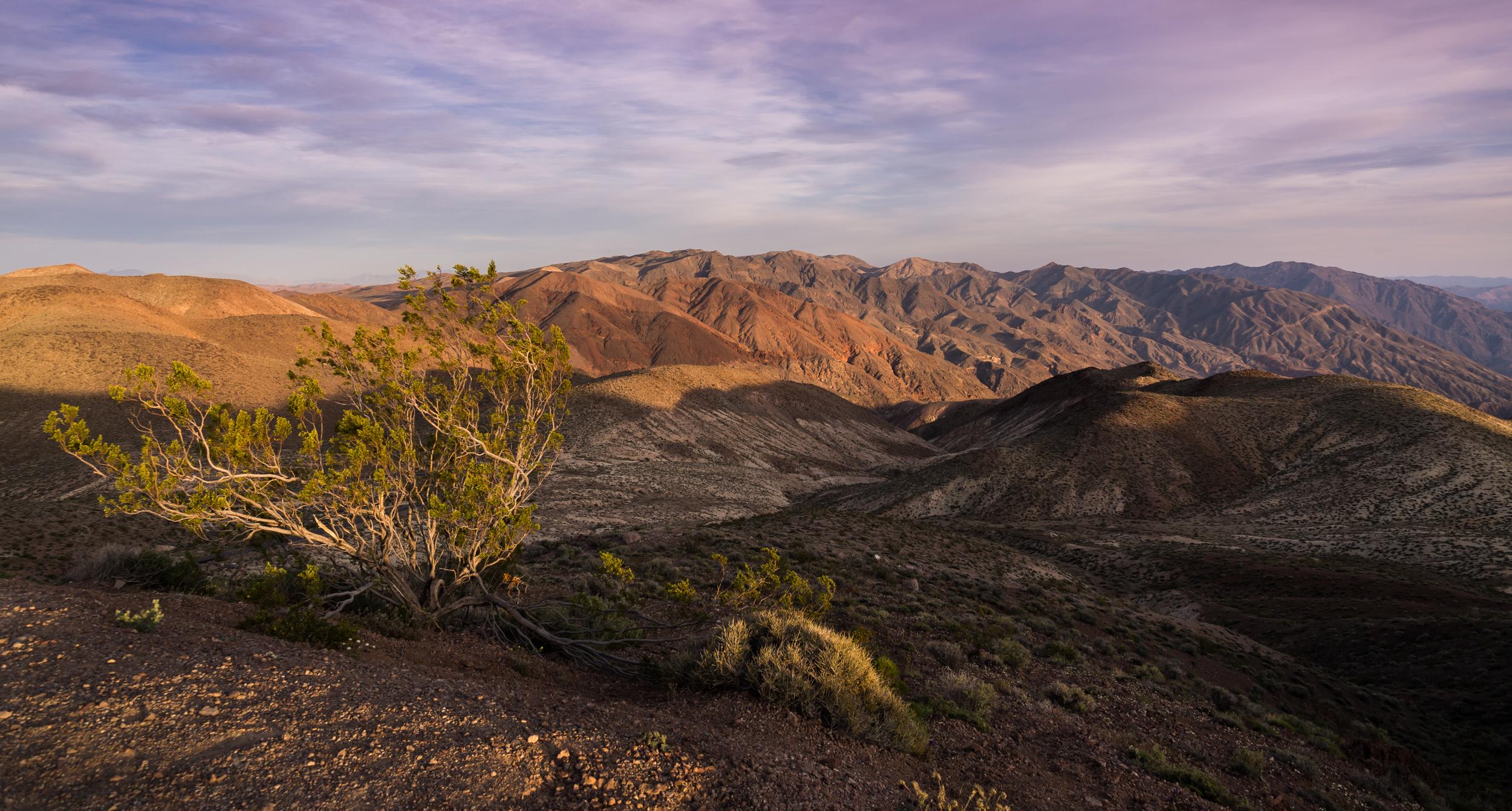Dante's View SE