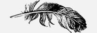 Feather-5.jpg