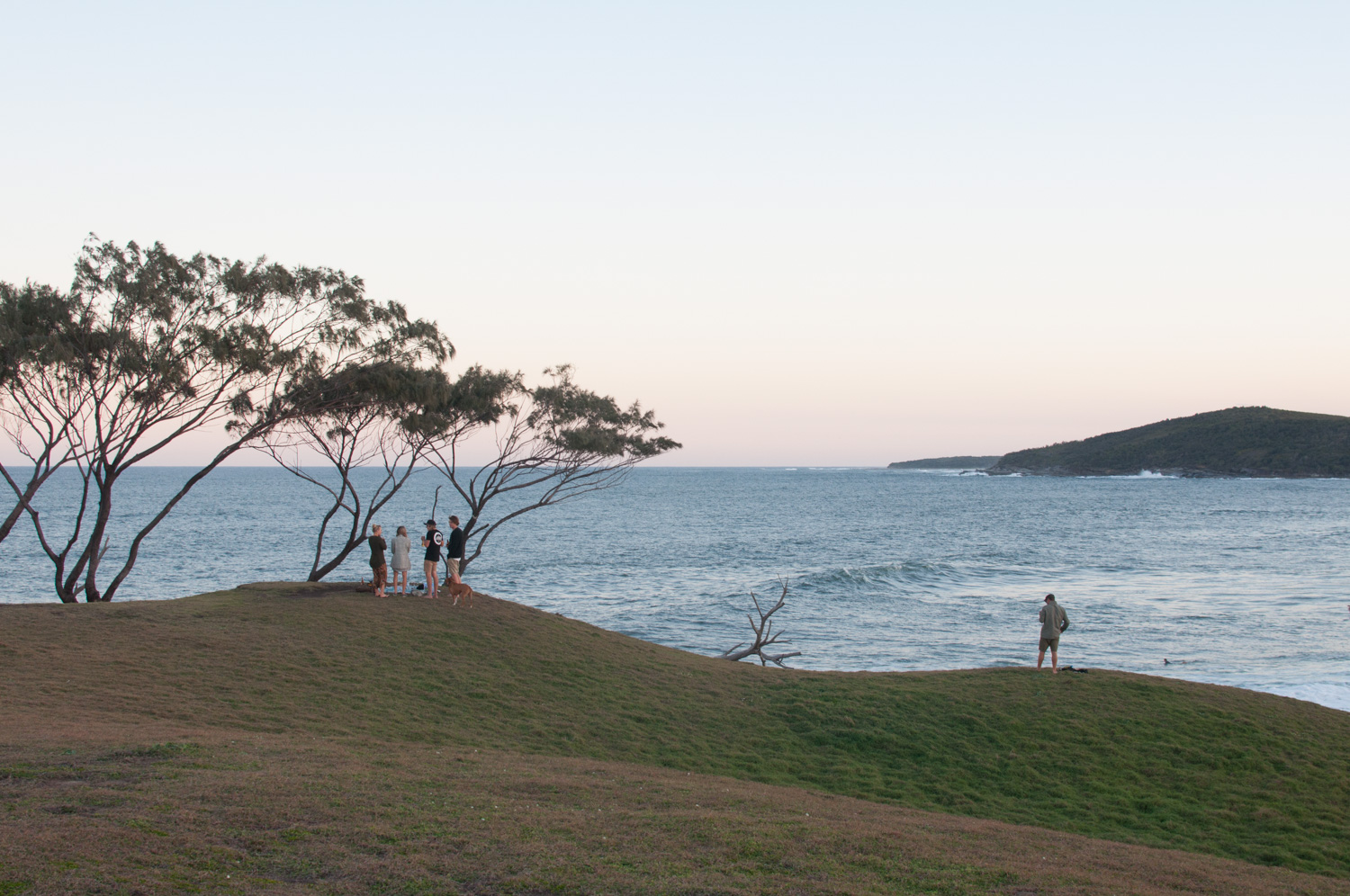 Angourie Point, Australia  Photography by @looseleaf