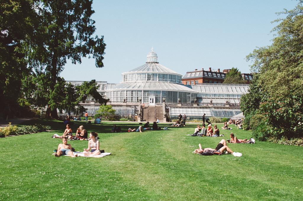 Copenhagen Botanical Garden, Copenhagen  Photography by @looseleaf