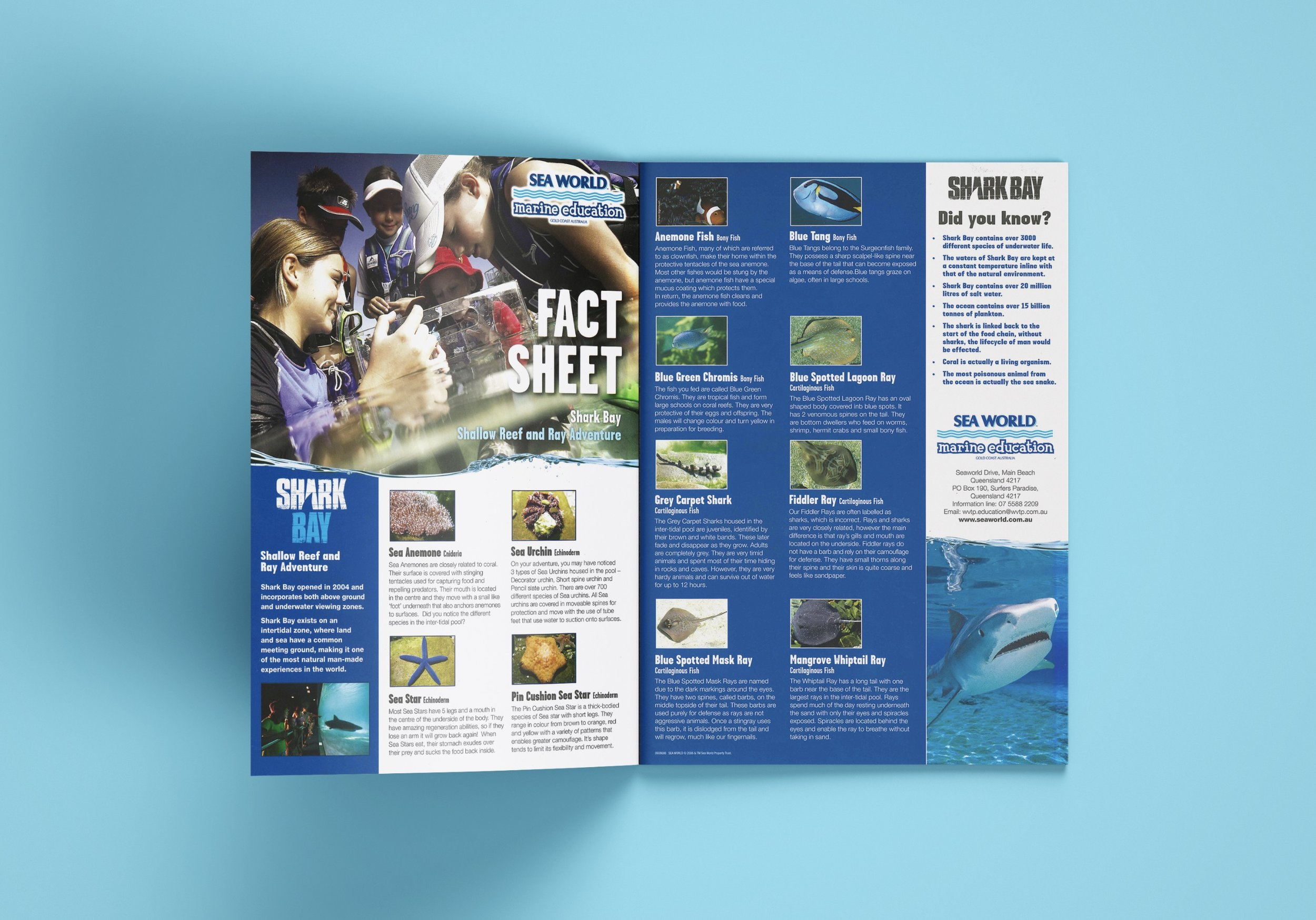 Sea World Fact Sheet.jpg