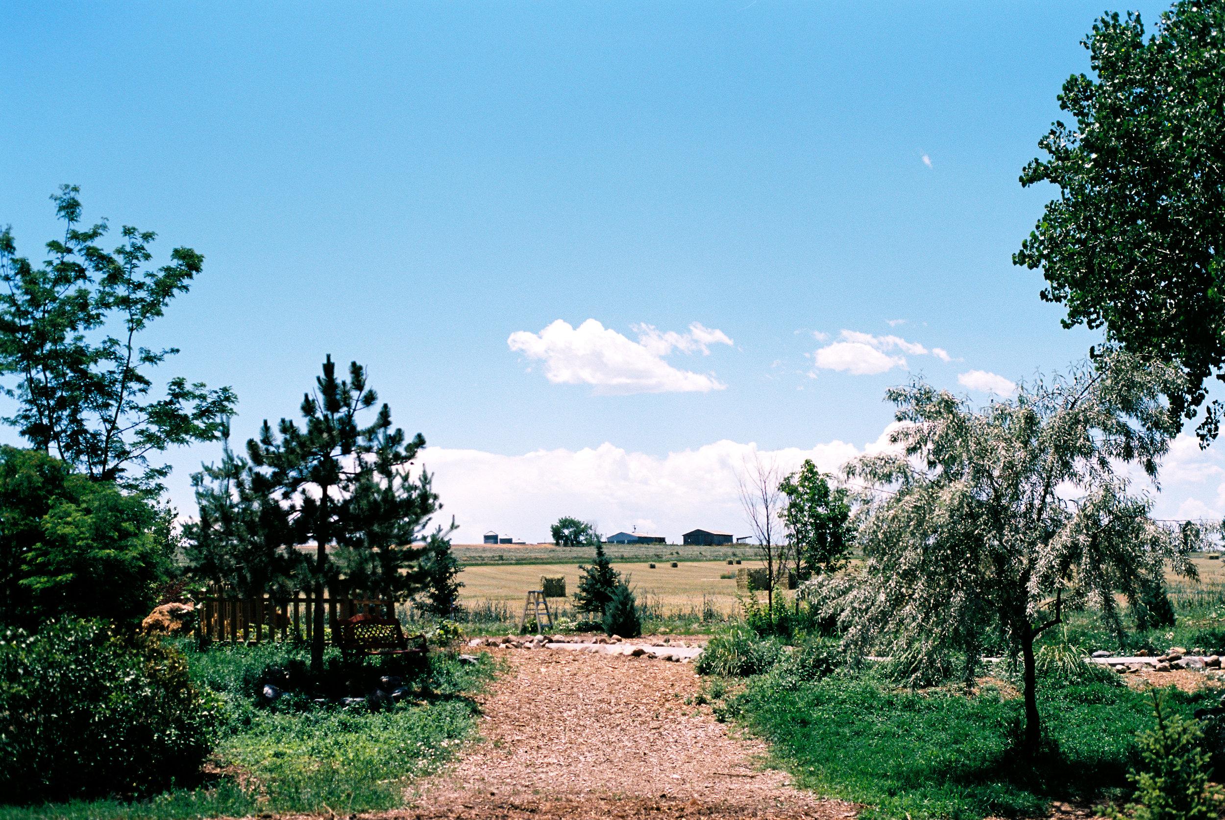 road-22.jpg