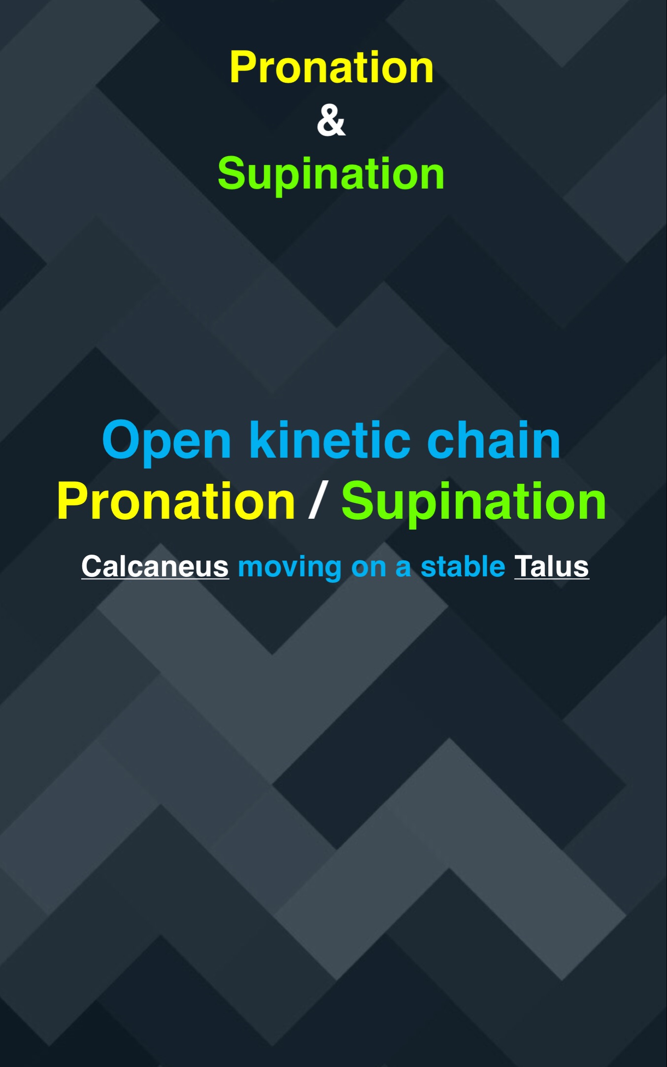 Pronation : Supination03.jpg