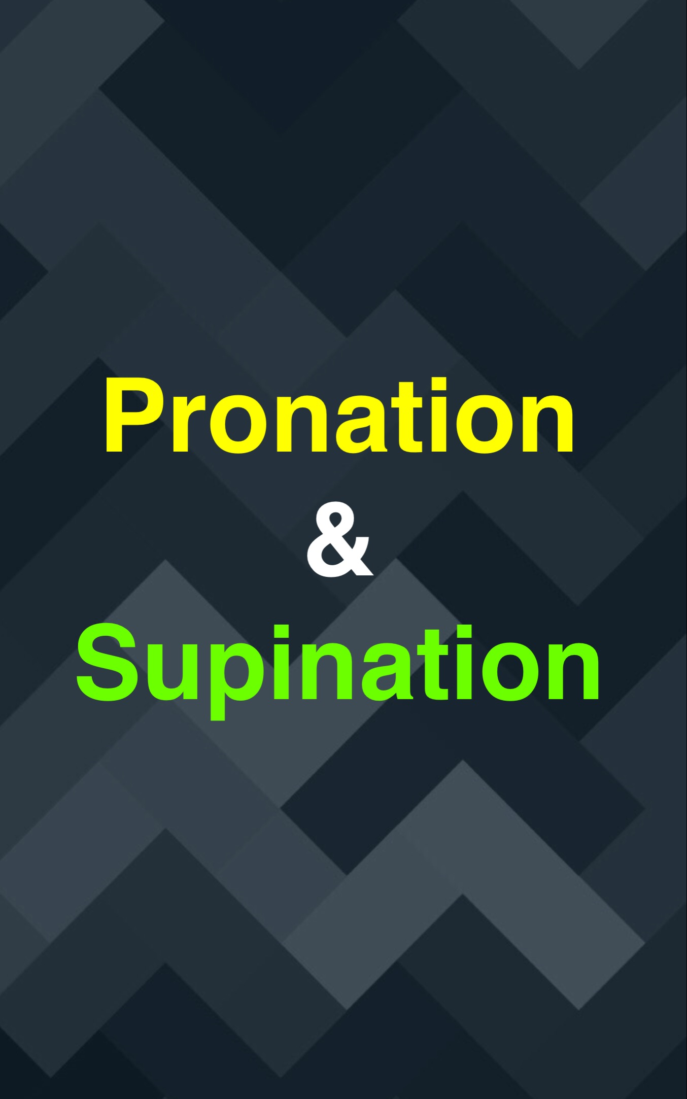 Pronation : Supination01.jpg