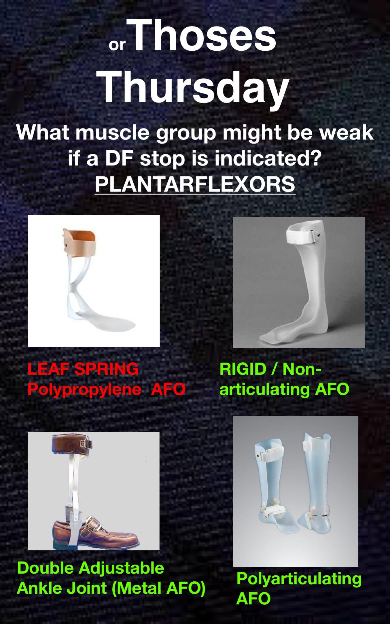 Orthoses13.jpg