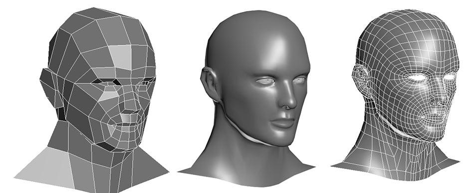 Loomis Head Wireframe
