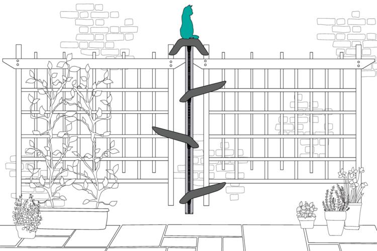 Best Cat Tree Modern Use Wall Mounted