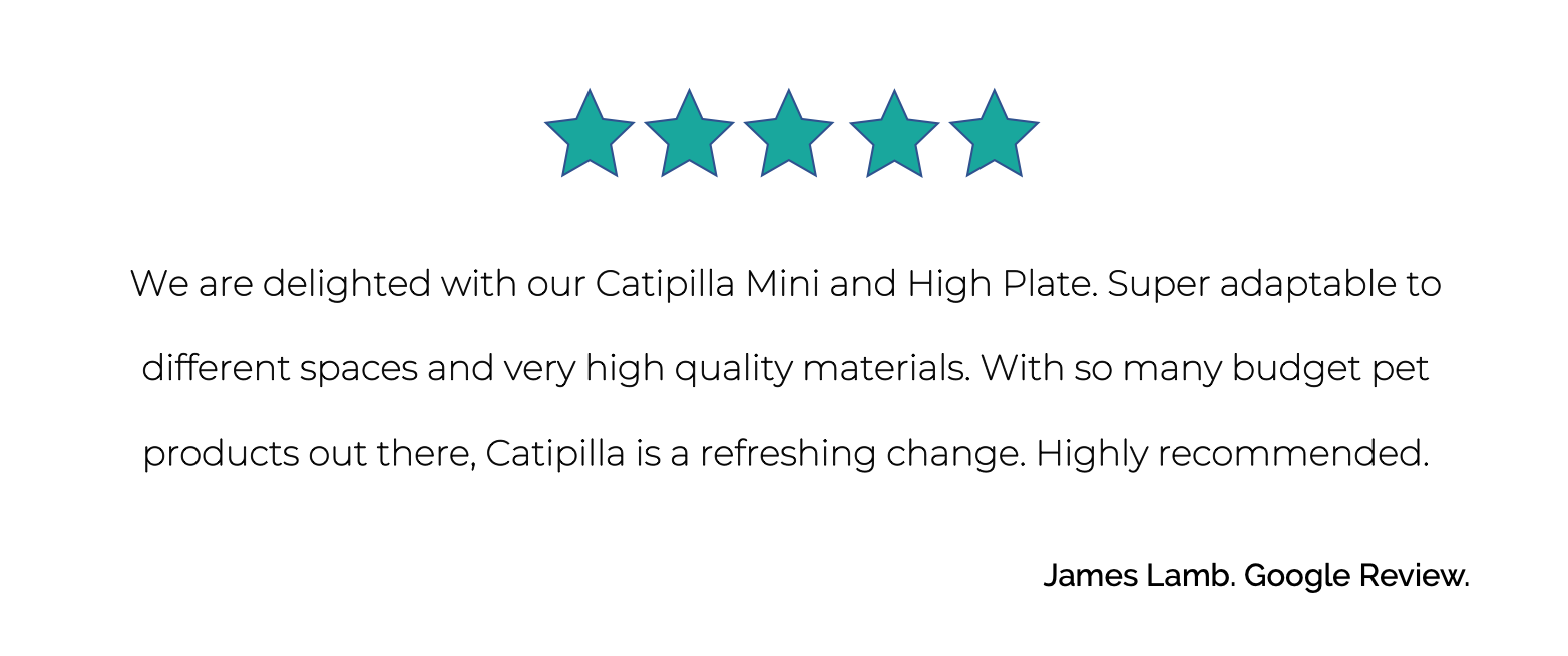 JL - Review.png